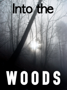 forest book cover into the woods creepy