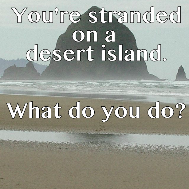 Desert Island, Question