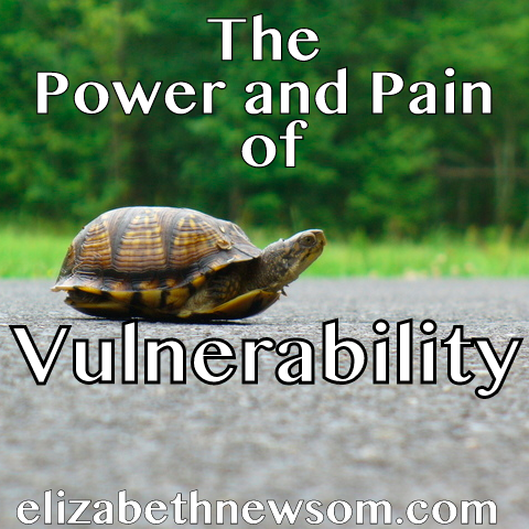 Vulnerability,