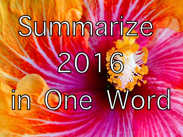 New Year, 2016, Unfurling, Blossom
